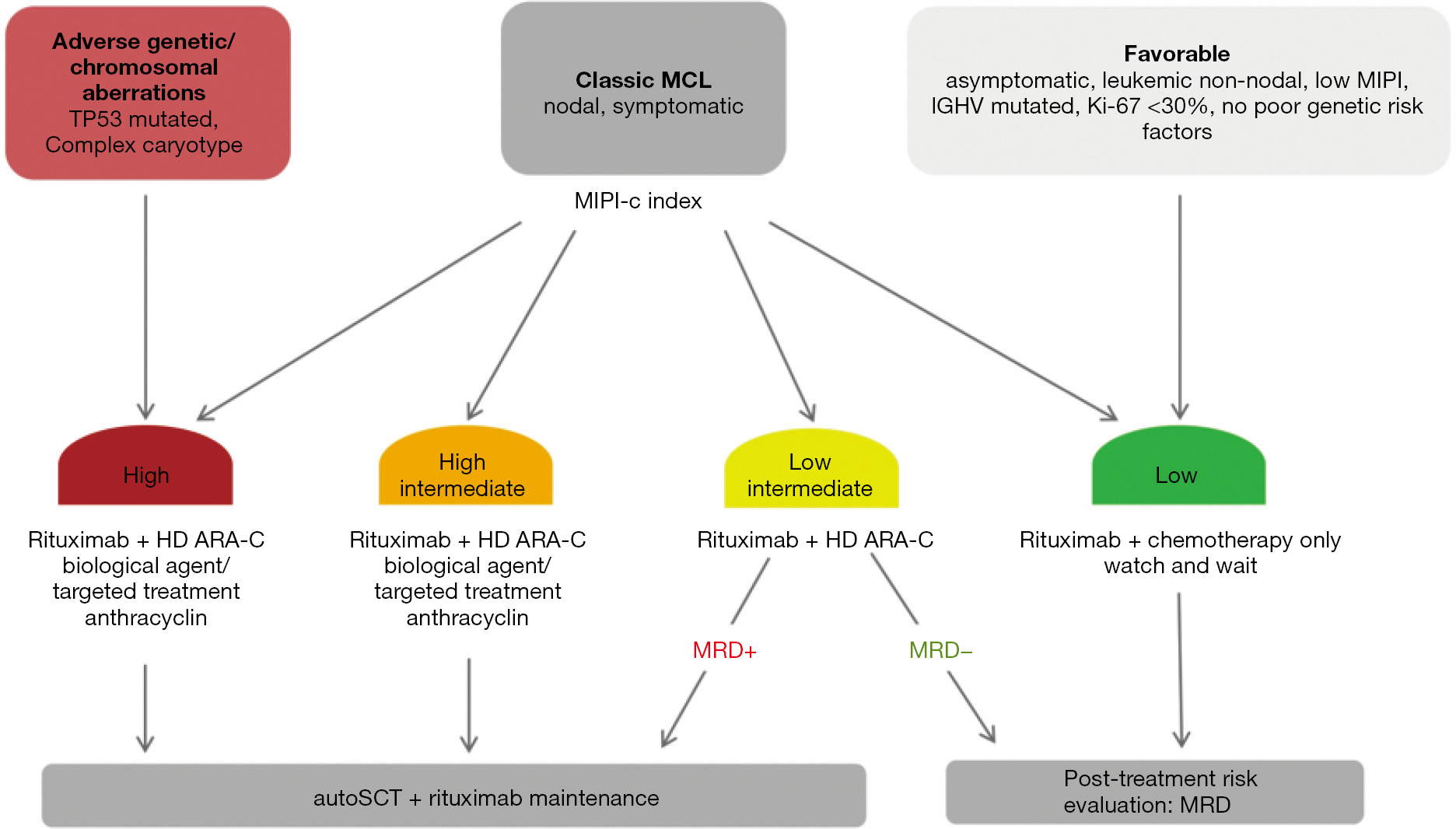 Risk stratification of mantle cell lymphoma (MCL) - Liebers
